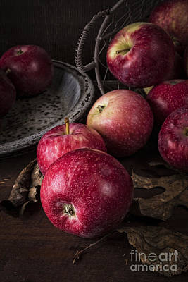 Biology Photograph - Apple Still Life by Edward Fielding