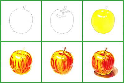Apple Study Art Print by Irina Sztukowski