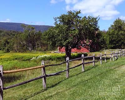 Photograph - Apple Tree And Barn by Donna Cavanaugh