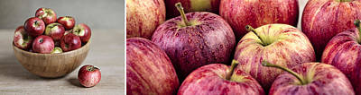Panorama Wall Art - Photograph - Apples 02 by Nailia Schwarz