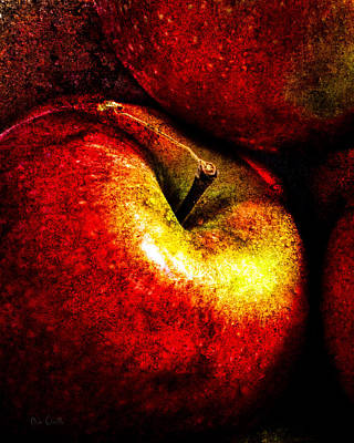 Hands Photograph - Apples  by Bob Orsillo