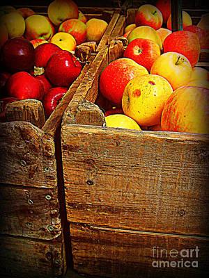 Apples In Old Bin Art Print by Miriam Danar