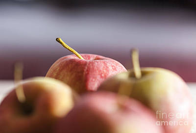 Photograph - Apples by Jim Orr