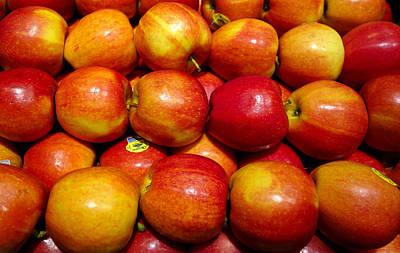 Photograph - Apples by Robert Meyers-Lussier