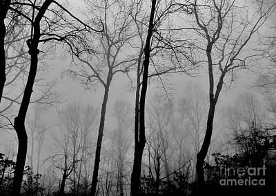 Photograph - Approaching Fog by Hominy Valley Photography
