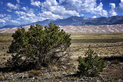 Photograph - Approaching Great Sand Dunes #1 by Nikolyn McDonald