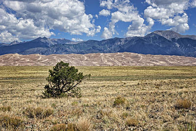 Photograph - Approaching Great Sand Dunes #2 by Nikolyn McDonald