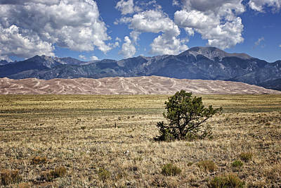 Photograph - Approaching Great Sand Dunes #3 by Nikolyn McDonald