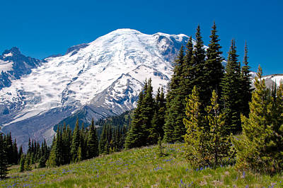 Photograph - Approaching Mount Rainier by David Patterson