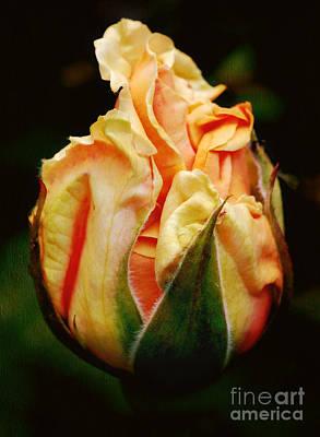 Apricot Cream Parfait Art Print