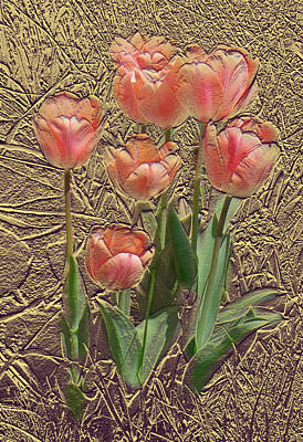 Photograph - Apricot Tulips by Steve Karol