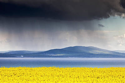 Rapeseed Photograph - April by Evgeni Dinev