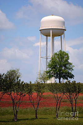 Photograph - April In Brenham by Connie Fox