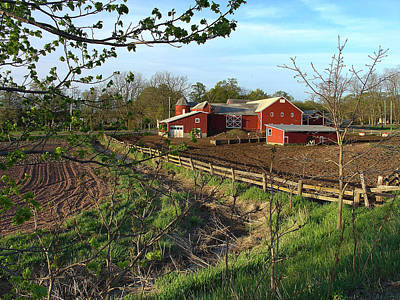 Photograph - April Light Rises On Story's Farm by Terrance DePietro
