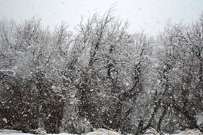 Photograph - April Snow In Utah V Landscape by rd Erickson