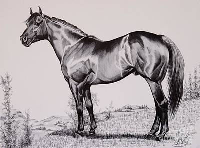 Blood Bay Horse Drawing - Aqha Stallion Driftwood by Cheryl Poland