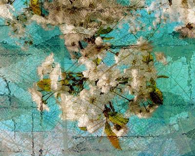 Cherry Blossoms Digital Art - Aqua Blossom by Marcie  Adams