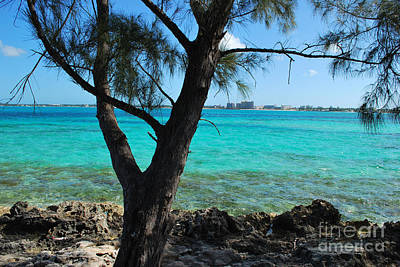 Photograph - Aqua Blue Green Waters 2 by Bob Sample