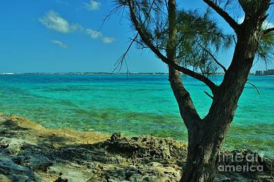 Photograph - Aqua Blue Waters 4 by Bob Sample