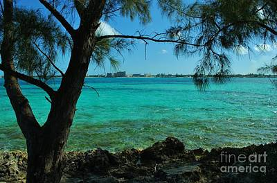 Photograph - Aqua Blue Waters by Bob Sample
