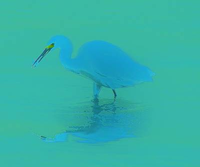 Mellow Yellow Rights Managed Images - Aqua Blue Royalty-Free Image by Billy Beck