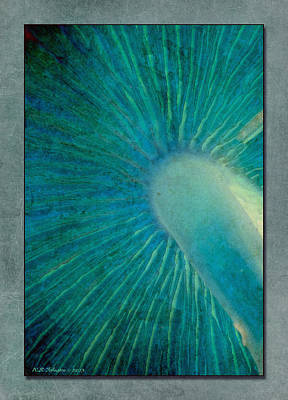 Photograph - Aqua Gills by WB Johnston