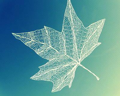 Aqua Leaf Study 4 Art Print