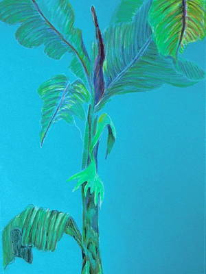 Aqua Palm Original by Mindy Newman