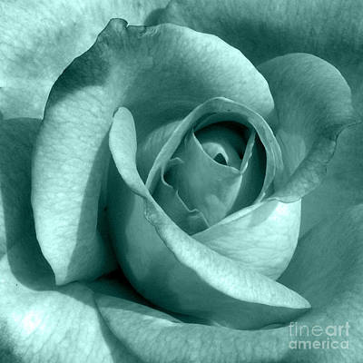 Photograph - Aqua Rose by Valerie Reeves