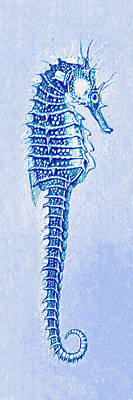 Digital Art - Aqua Seahorse- Right Facing by Jane Schnetlage