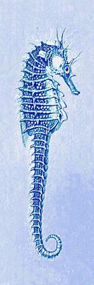 Beach Digital Art - Aqua Seahorse- Right Facing by Jane Schnetlage
