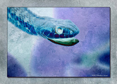 Photograph - Aqua Serpent 3 by WB Johnston
