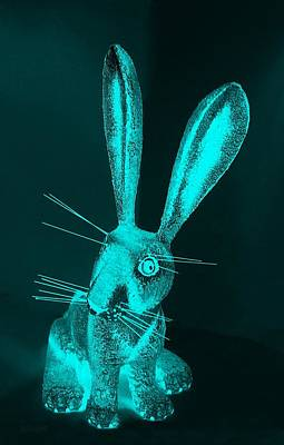 Photograph - Aquamarine New Mexico Rabbit by Rob Hans