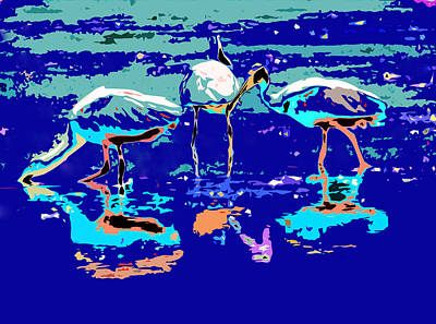 Spoonbill Digital Art - Aquamarine Spoonbills by Norman Johnson