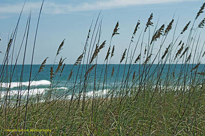 Photograph - Aquanique Beach by Nance Larson