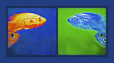 Aquarium Art Diptych Art Print by Steve Ohlsen