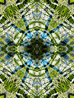 Photograph - Aquatic Lace 20 by Shawna Rowe