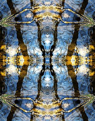 Photograph - Aquatic Lace by Shawna Rowe