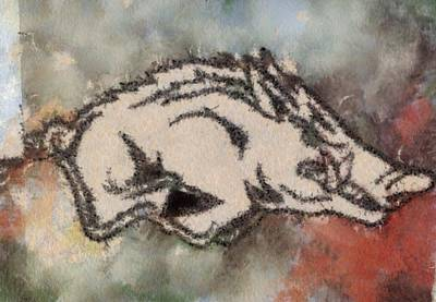 Ar Razorbacks Go Hogs Print by Dawn Bearden