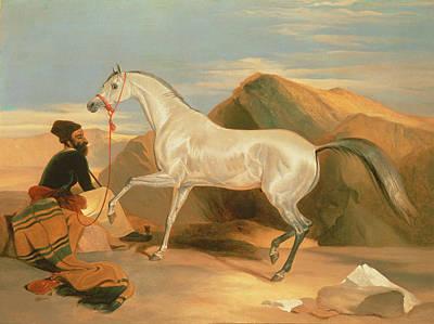 Horse Art Painting - Arab Stallion by Sir Edwin Landseer