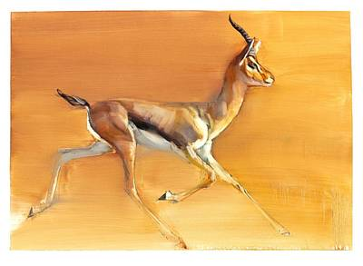 Gazelle Painting - Arabian Gazelle by Mark Adlington