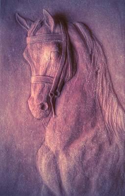 Arabian Horse. Original