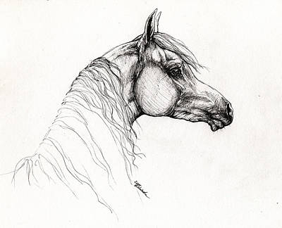 Arabian Horse Drawing 11 Original by Angel  Tarantella