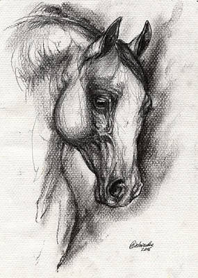 Arabian Horse Drawing 12 Original