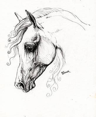 Arabian Horse Drawing 15 Art Print by Angel  Tarantella