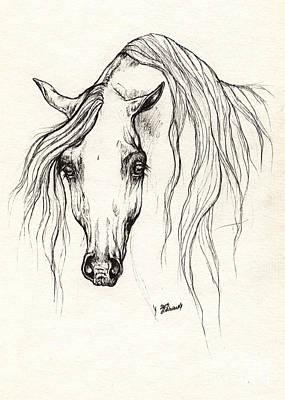 Arabian Horse Drawing 19 10 2013 Art Print