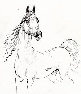 Arabian Horse Drawing 19 Art Print by Angel  Tarantella