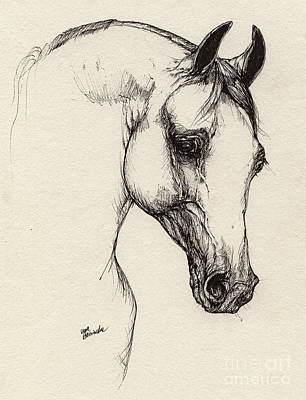 Arabian Horse Drawing 32 Original by Angel  Tarantella