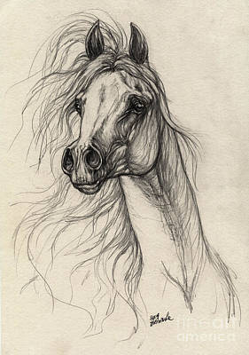 Wild Horses Drawing - Arabian Horse Drawing 37 by Angel  Tarantella
