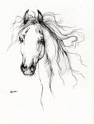 Arabian Horse Drawing 4 Art Print